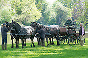 © Licensed to London News Pictures. 15/05/2014. Windsor, UK . HRH Prince Philip, The Duke of Edinburgh, drives a four horse carriage on the second day of The Royal Windsor Horse Show, set in the grounds of Windsor Castle. Established in 1943. Photo credit : Stephen Simpson/LNP