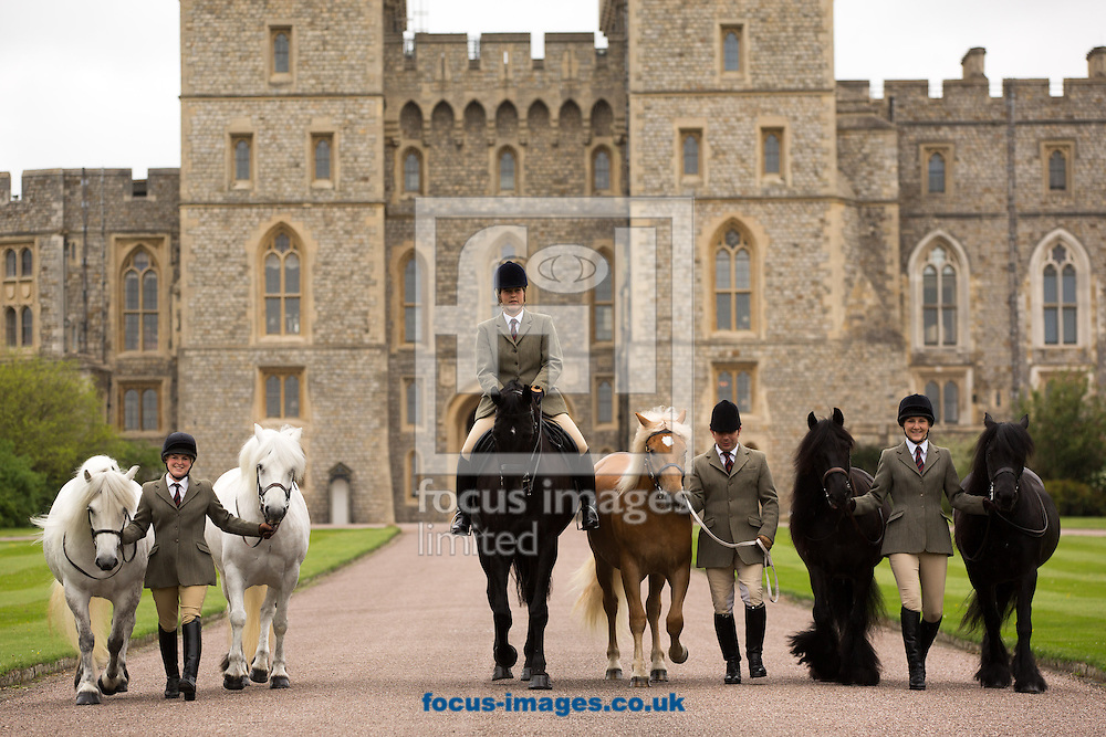 The Queen&rsquo;s horses, of all shapes and sizes, on parade to welcome over 50,000 visitors to the Royal Windsor Horse Show, running  13-17/5/15. Her Majesty The Queen, who has attended the show every year since it began in 1943, has several entries including her home bred Highlands and her former racehorse, Barber&rsquo;s Shop.<br /> <br /> Shown:<br /> <br /> Horses from left to right: Alpine, Mingulay, George (named after Her Majesty the Queen&rsquo;s Father), Anson, Dawn and Emma (the Queen's own riding pony)<br /> Grooms from left to right: Harriet White, Zoe McDonald, Christopher Allen and Sadie Henderson<br /> <br /> <br /> Picture by Mark Chappell/Focus Images Ltd +44 77927 63340<br /> 12/05/2015