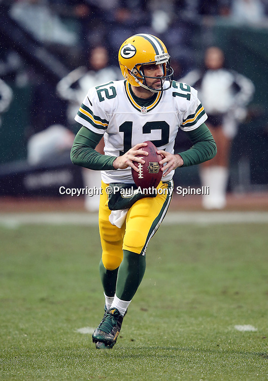 Green Bay Packers quarterback Aaron Rodgers (12) scrambles as he looks to pass during the 2015 week 15 regular season NFL football game against the Oakland Raiders on Sunday, Dec. 20, 2015 in Oakland, Calif. The Packers won the game 30-20. (©Paul Anthony Spinelli)