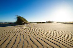 Oregon Dunes National Monument Photos