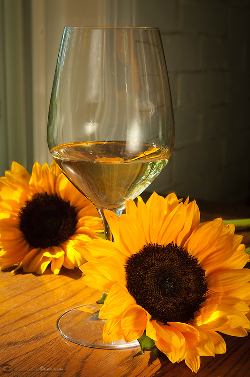 glass of white wine with fresh cut sunflowers