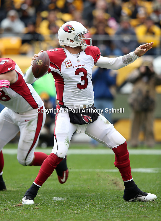 Arizona Cardinals quarterback Carson Palmer (3) drops back and throws for a second quarter first down during the 2015 NFL week 6 regular season football game against the Pittsburgh Steelers on Sunday, Oct. 18, 2015 in Pittsburgh. The Steelers won the game 25-13. (©Paul Anthony Spinelli)