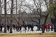 Line dancing in park of the Temple of Heaven, Beijing, China