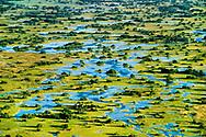 Palm islands, Okavango Delta, Botswana