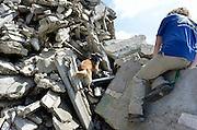 Nederland, Boven-Leeuwen, 17-5-2014Reddingshonden trainen tussen het puin van sloopbedrijf De Ruiter. Ze worden ingezet in aardbevingsgebieden.Foto: Flip Franssen/Hollandse Hoogte
