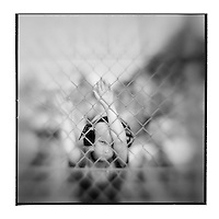 USA, Maryland, Mechanicsville, Blurred black and white image of young boy standing along fence during Demolition Derby at Potomac Speedway