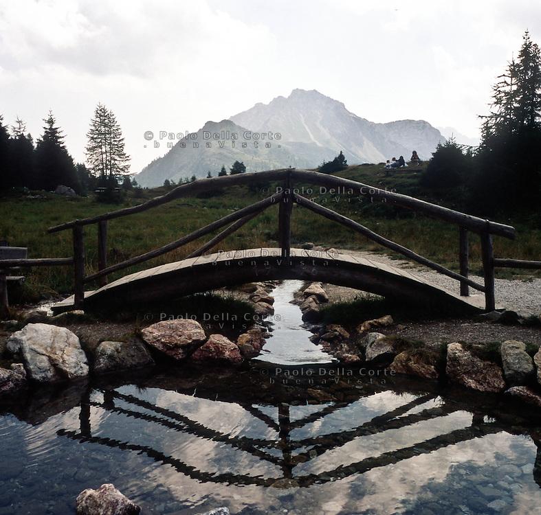 Il fiume Piave nasce nella Val Sesis, alle pendici del monte Peralba. Nelle foto le sorgenti.