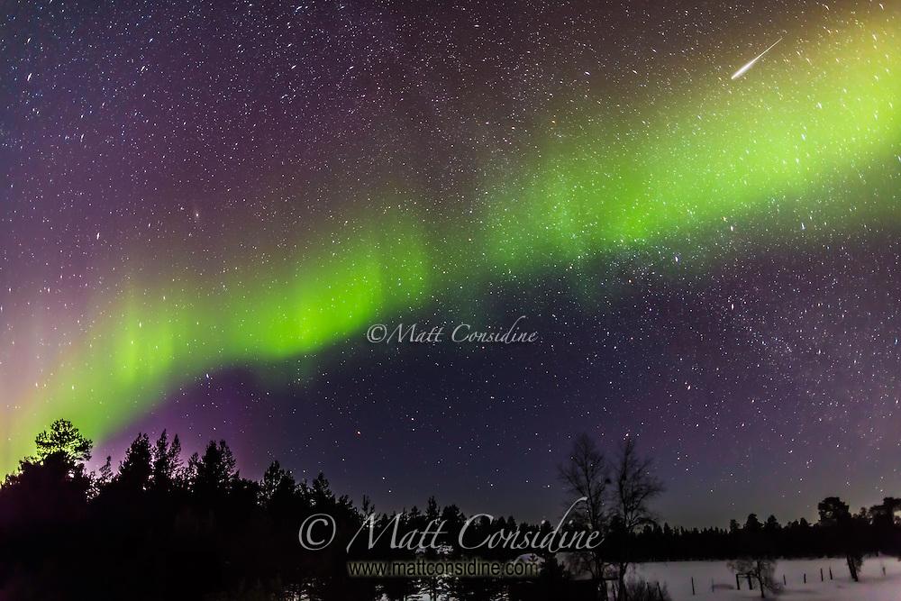 Multicolored northern lights. (Photo by Travel Photographer Matt Considine)