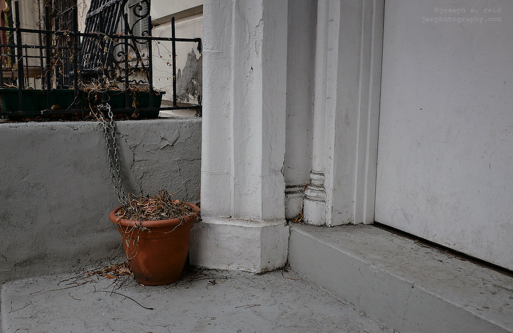Potted plant chained to fence outside house, New York, NY, US
