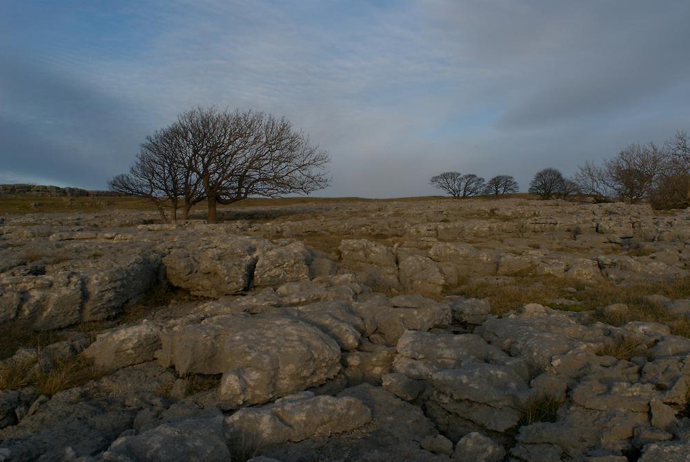 Limestone Pavement at Hutton Roof, Cumbria