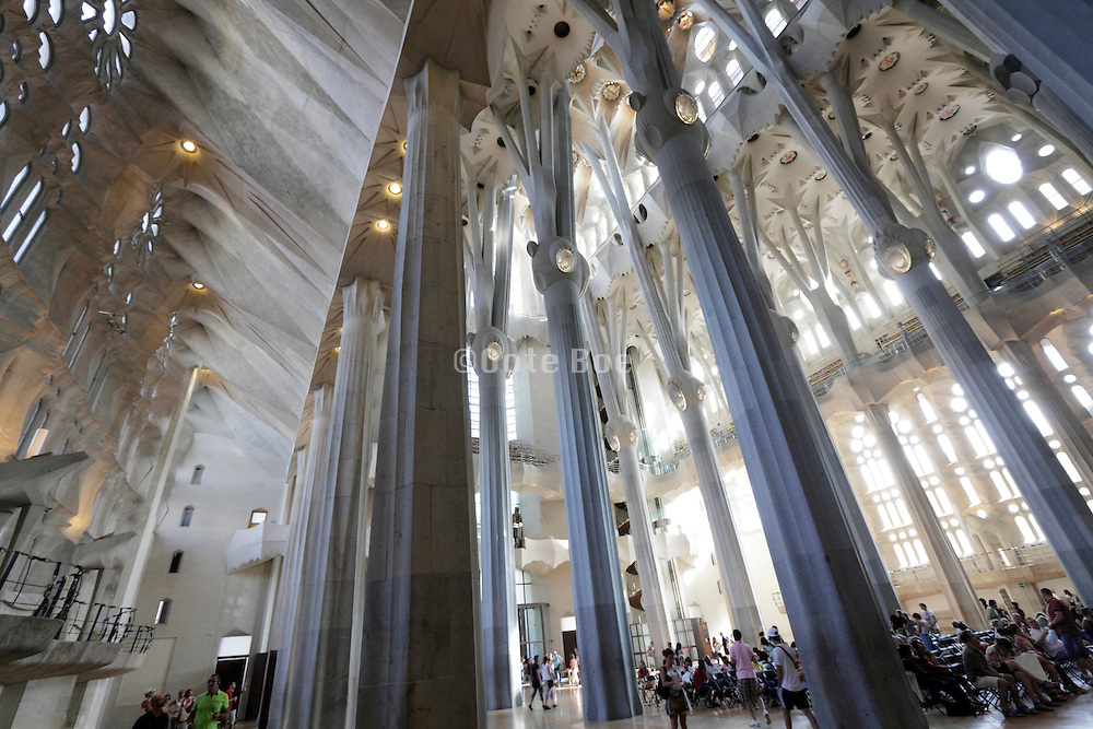 interior Sagrada Familia Barcelona Spain