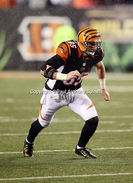 Cincinnati Bengals tight end Tyler Eifert (85) goes out for a pass during the NFL AFC Wild Card playoff football game against the Pittsburgh Steelers on Saturday, Jan. 9, 2016 in Cincinnati. The Steelers won the game 18-16. (©Paul Anthony Spinelli)