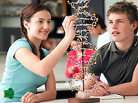 Teenagers working on DNA model in science class