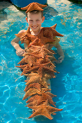 Caribbean, Netherland Antilles, Curacao, Willemstad.  Boy (10 years) covered in starfish MR