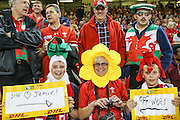 Welsh rugby fan during the Rugby World Cup Pool A match between Wales and Fiji at Millenium Stadium, Cardiff, Wales on 1 October 2015. Photo by Shane Healey.