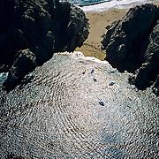 Aerial view of Los Cabos, Baja California Sur, Mexico.