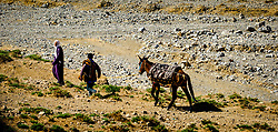 Two men with a donkey on the piste from Tamtetoucht to Msemrir, Morocco<br /> <br /> (c) Andrew Wilson | Edinburgh Elite media