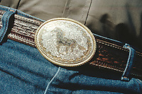 Belt Buckle depicting horse, on belt with Cowboy's Jeans