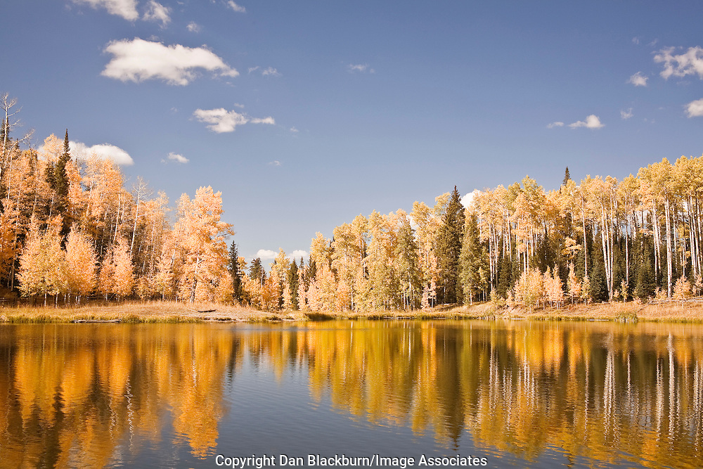 A Colorado mountain lake reflects the fall colors of aspens on an autumn afternoon in the Cimarron range.