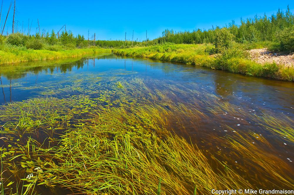 Haywood CReek<br />Near Weksusko<br />Manitoba<br />Canada