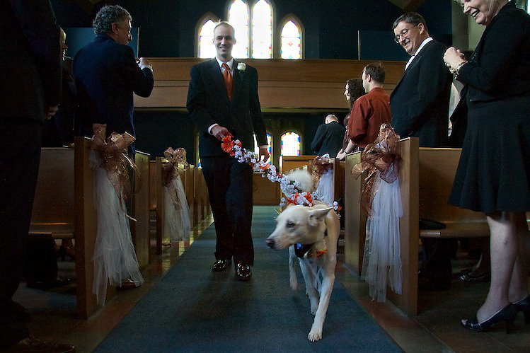 Buddy, the pooch and ring bearer. To view the newlywed's complete Wedding Gallery Collection, please visit the Client Area and log-in. You'll be able to view these and other images as a slideshow, order prints and more.