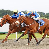 Haafaguinea and Adam Kirby winning the 4.00 race