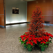 Holiday / Christmas Decorations<br /> Inside the Renaissance Center GM adds some holiday flare.