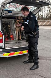 Police dog team