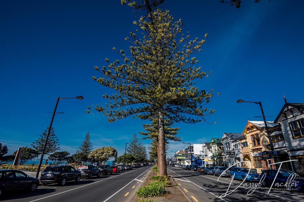 Marine Parade in Napier.