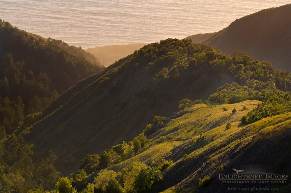 Spring sunset light in the rugged steep hills above the ocean, Ventana Wilderness, Los Padres National Forest, Big Sur coast, California Spring sunset light in the rugged steep hills above the ocean, Ventana Wilderness, Los Padres National Forest, Big Sur coast, California