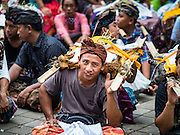 13 JULY 2016 - UBUD, BALI, INDONESIA:  A man with the burned bones of a member of the community after the mass cremation Wednesday. Local people in Ubud exhumed the remains of family members and burned their remains in a mass cremation ceremony Wednesday. Almost 100 people will be cremated and laid to rest in the largest mass cremation in Bali in years this week. Most of the people on Bali are Hindus. Traditional cremations in Bali are very expensive, so communities usually hold one mass cremation approximately every five years. The cremation in Ubud will conclude Saturday, with a large community ceremony.     PHOTO BY JACK KURTZ
