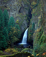 Wahclella Falls is by far one of the most powerful waterfalls in the Columbia River Gorge. The falls consist of two very colourful tiers dropping out of a very narrow gorge, plunging into a large pool at the head of a massive basalt amphitheatre.