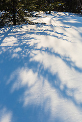 Spruce shadows fall across the snow on Hanson Top on Green Mountain in Effingham, New Hampshire. Winter.