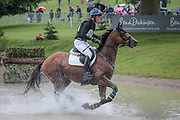 STINGER ridden by Ludwig Svennerstal (SWE) taking part in the Equitrek CCI*** cross country on day three of the during the Bramham International Horse Trials 2017 at  at Bramham Park, Bramham, United Kingdom on 11 June 2017. Photo by Mark P Doherty.