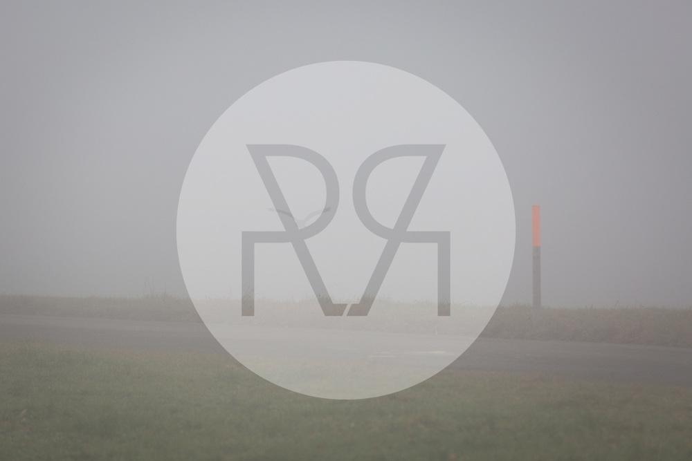 SCHWEIZ - MEISTERSCHWANDEN - Ein Vogel fliegt im Nebel davon - 06. Dezember 2016 © Raphael Hünerfauth - http://huenerfauth.ch