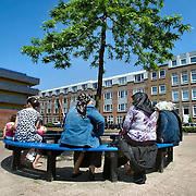 Nederland Rotterdam 24-05-2009 20090524 Foto: David Rozing .                                                                                    .Achterstandswijk Bloemhof, groepje moslima's zitten op pleintje op bankje onder boom Muslim woman chatting outside in neighbourhoud, muslims, straatbeeld, stadbeeld.Foto: David Rozing/