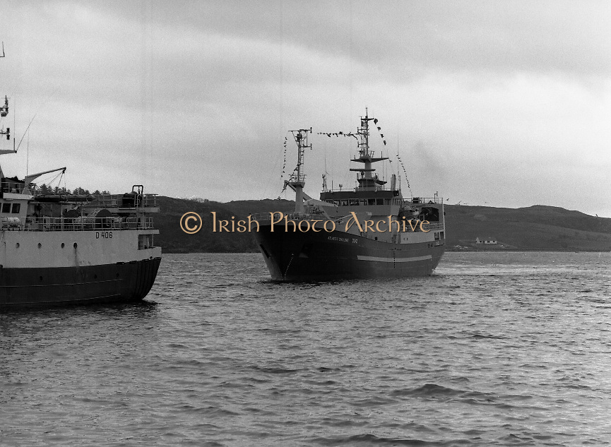 """Supertrawler arrives at Killybegs..1986..17.05.1986..05.17.1986..17th May 1986..""""Atlantic Challenge"""" the new IR£6million supertrawler,the flag ship of the Irish fishing fleet arrived at Killybegs today. The vessel was built for Killybegs' Enterprises in Bergen,Norway. Killybegs' Enterprises also have """"Western Viking"""".""""Jasper Sea"""" and""""Silver King""""supertrawlers in their fleet..The vessel will be skippered by Mr Martin Howley who originally trained with B.I.M.s National Fishery Training Centre, Greencastle..The company plans to fish for non-quota stocks such as Blue Whiting and Horse Mackerel,her fishing pattern will lessen dependence on mackerel as quotas are low for the Irish fleet...Picture shows a view from the quay as the """"Atlantic Challenge"""" heads into harbour."""