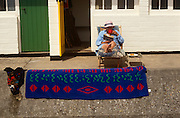 With a drying beach towel drying on the sea wall, a seaside holidaymaker sips tea outside her seafront chalet in Lowestoft.