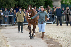 Stretton Sarah, (GBR), Skip On<br /> First Horse Inspection - Mitsubishi Motors Badminton Horse Trials <br /> Badminton 2015