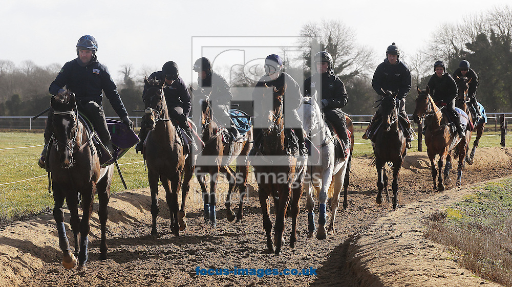 Don Cossack (front on left) after morning exercise pictured during Gordon Elliot yard visit at Cullentra House Stables, Longwood<br /> Picture by Lorraine O'Sullivan/Focus Images Ltd +353 872341584<br /> 04/03/2015