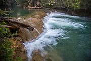 Rio Formoso, Clear water, Bonito, Mato Grosso de Sul, Brazil