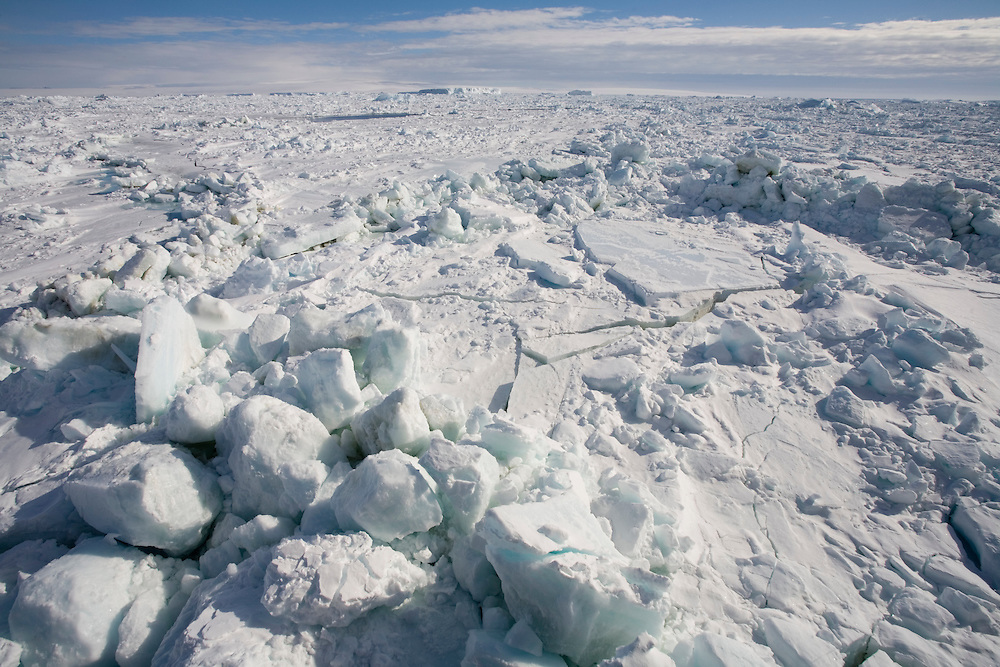 Antarctica, Erebus and Terror Gulf, Solid winter ice covers Weddell Sea in early summer