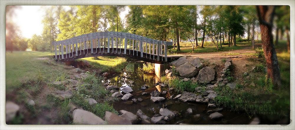 Gary Cosby Jr.  iPhone photographs  A foot bridge spans a small creek in Hartselle, Alabama.