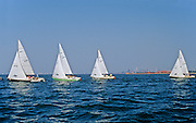 Sailing on Lake Ontario  (Hamilton Harbour) during regatta<br /> Hamilton<br /> Ontario<br /> Canada