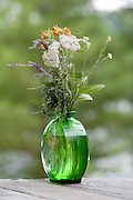 Bouquet of wild flowers in an antique green vase.  Danbury Wisconsin USA