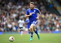Aron Gunnarsson, Cardiff City.