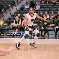 2nd year libero Dryden Wall (18) of the Regina Cougars in action during Men's Volleyball home game on January 12 at Centre for Kinesiology, Health and Sport. Credit: /Arthur Images 2018