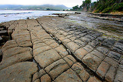 AUSTRALIA TASMANIA 6FEB08 - Tessellated pavement near Eaglehawk Neck on the Tasman Peninsula. The strange geological formation which gives the rocks the effect of being rather neatly tiled by a giant. However, the pavement appears tessellated (tiled) because the rocks forming it were fractured by earth movements...jre/Photo by Jiri Rezac..© Jiri Rezac 2008..Contact: +44 (0) 7050 110 417.Mobile:  +44 (0) 7801 337 683.Office:  +44 (0) 20 8968 9635..Email:   jiri@jirirezac.com.Web:    www.jirirezac.com..© All images Jiri Rezac 2007 - All rights reserved.