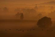 Fog blankets the Gettysburg battlefield as the sun rises, Sunday, Aug. 5, 2018, in Gettysburg.