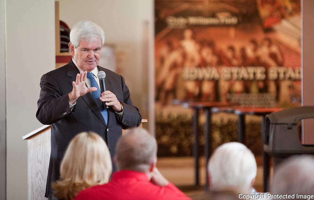 Former House Speaker Newt Gingrich speaks to the Team Iowa PAC during a luncheon at Jack Trice Stadium in Ames, Iowa on Thursday September 9, 2010. (Stephen Mally for The New York Times)